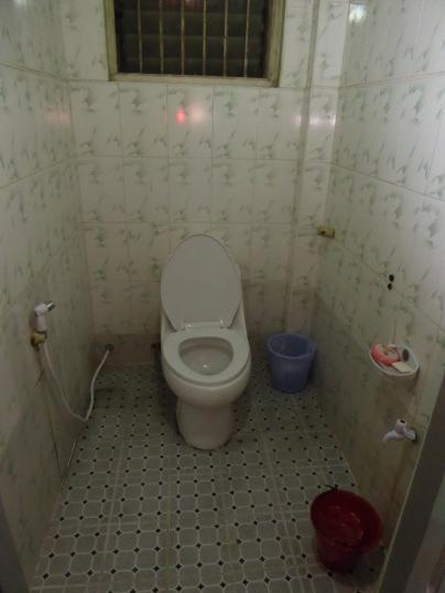 Flush toilet (!!)